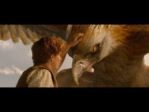 Fantastic Beasts and Where To Find Them | VFX Breakdown | DNEG