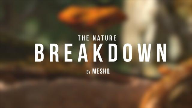 """The Nature"" by MesHQ 