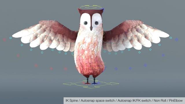 Bird / Owl Rigging #2