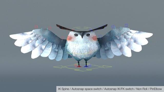 Bird / Owl Rigging #1
