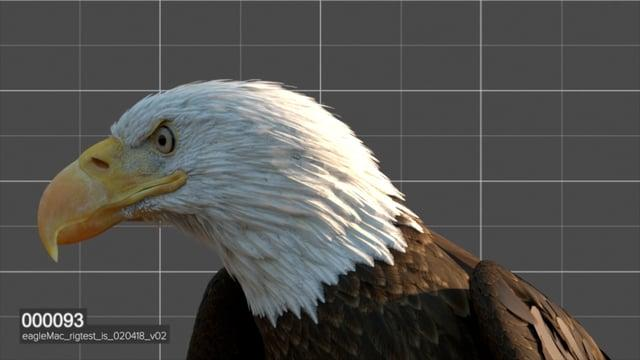 VFX Breakdown: Rock, Flag, and Eagle